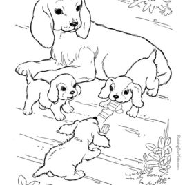 268x268 Coloring Pictures Of Farm Animals And Their Babies Ideas