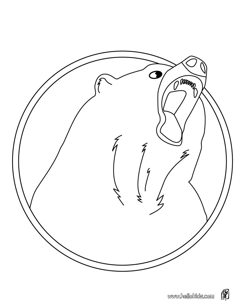 Coloring Pages Black Bear