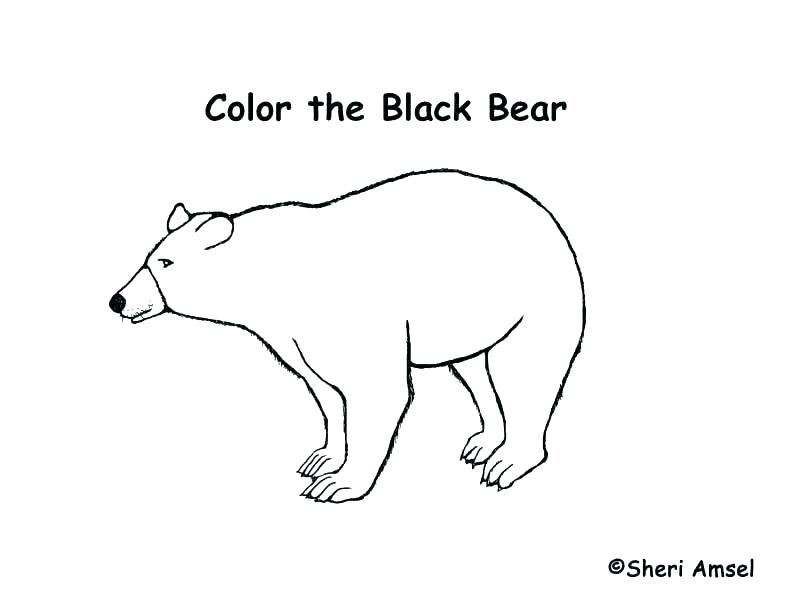 792x612 Black Bear Coloring Pages Black Bear Coloring Page Black Bear