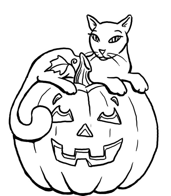 580x664 Cat And Pumpkin Coloring Page
