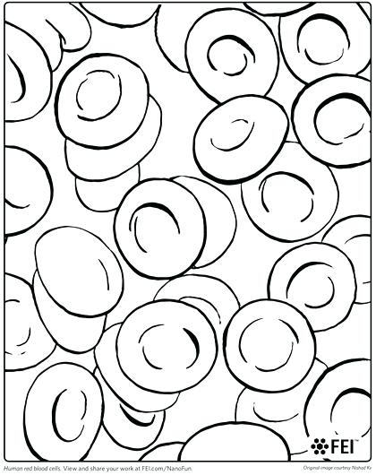 420x530 New Coloring Pages Blood Answers For Red Blood Cell Coloring Page