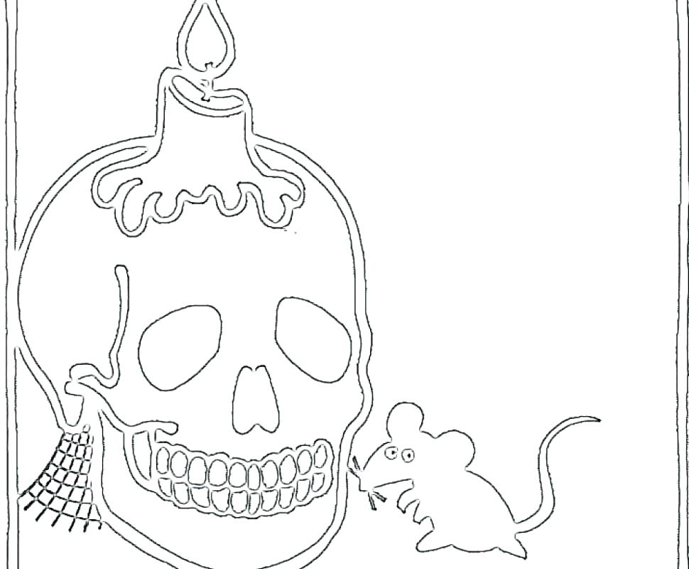 970x800 Skull Anatomy Coloring Pages Skull Coloring Pages Anatomy Anatomy