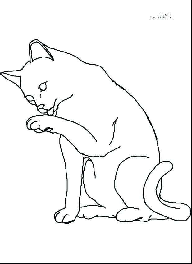 618x850 Cute Baby Kitten Coloring Page Pages Cat And Surprising Kids