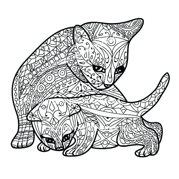 600x600 Free Kitten Coloring Pages Picture Of A Kitten To Color Cat