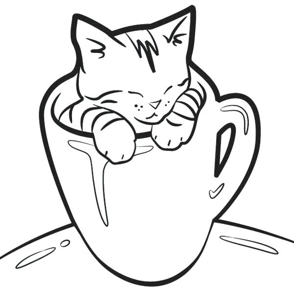 600x592 Kitten Pictures To Color Coloring Page Sporturka Cat Kitten
