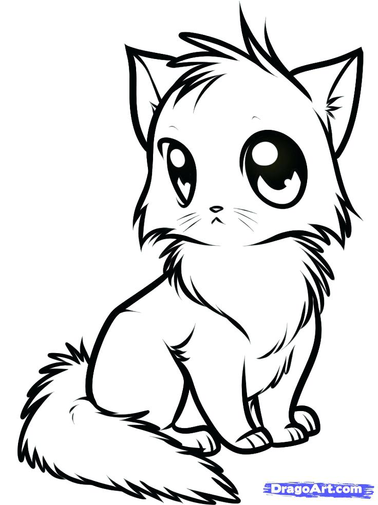 736x984 Cat Color Pages Printable Cat And Kitten Coloring Page Cats