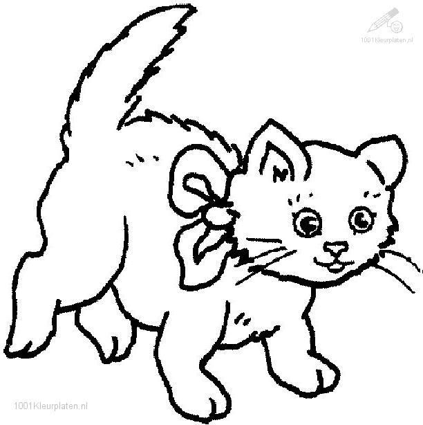 612x614 Cat Color Pages Printable Coloringpages Animals Gtgt Cats