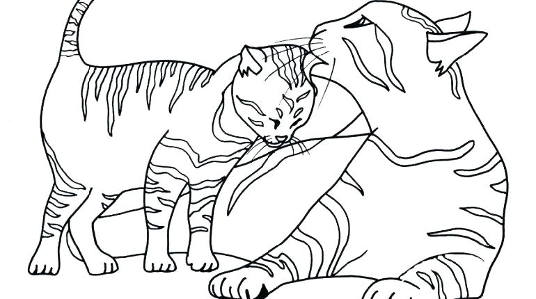 770x430 Coloring Page Cat Kitten In Cup Happy Kitten Coloring Page