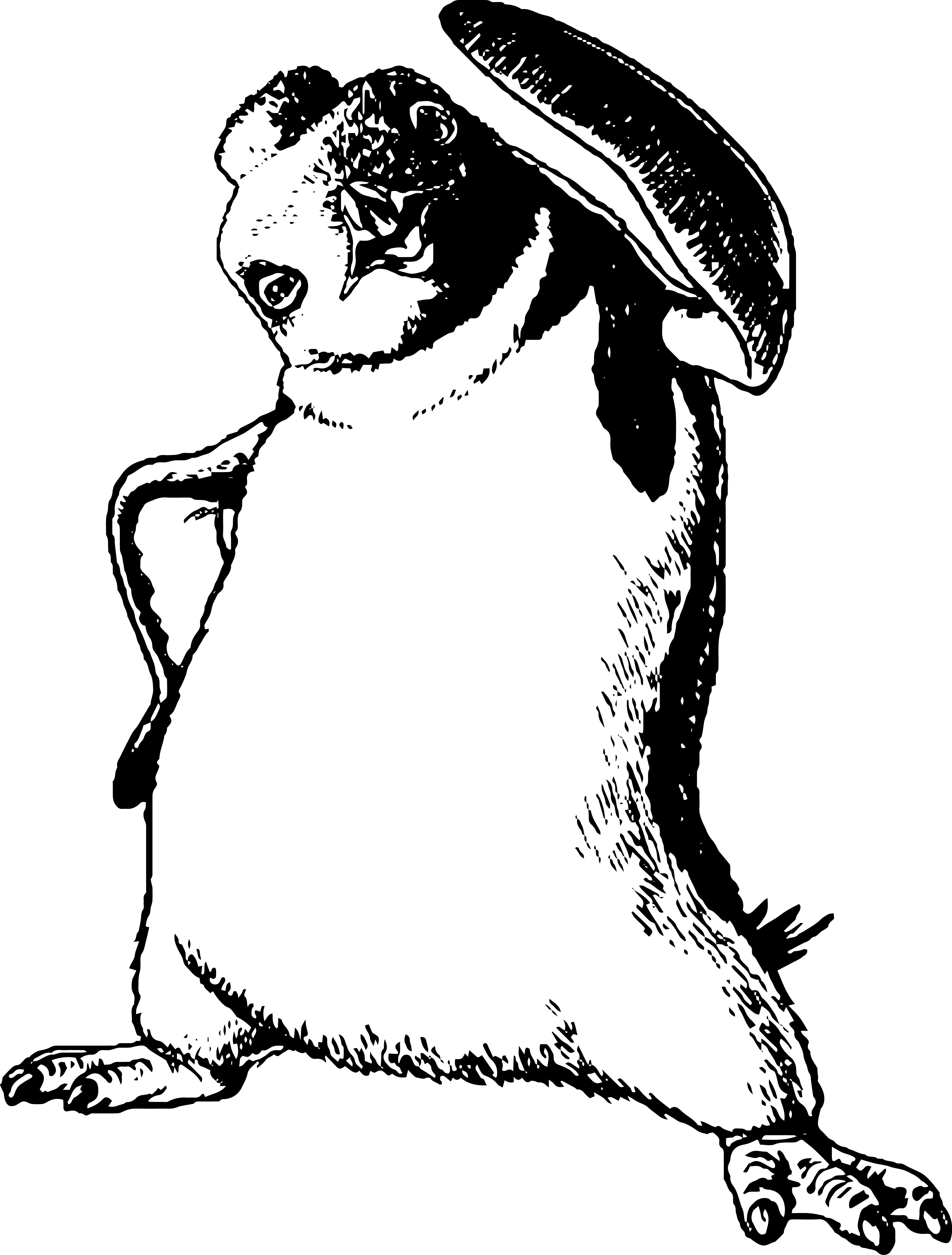 3859x5083 Happy Feet Coloring Pages Download