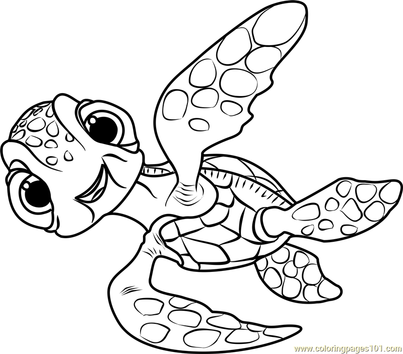800x703 Dory Coloring Pages Squirt Coloring Page Free Finding Dory