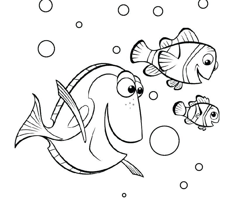 800x700 Finding Nemo Coloring Pages Marlin