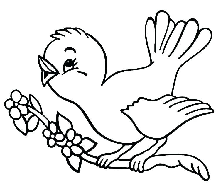 736x645 Easy Coloring Pages Year Olds Year Old Coloring Pages