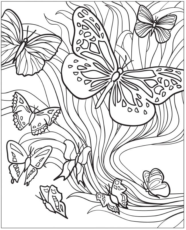 Coloring Pages For Adults Butterflies