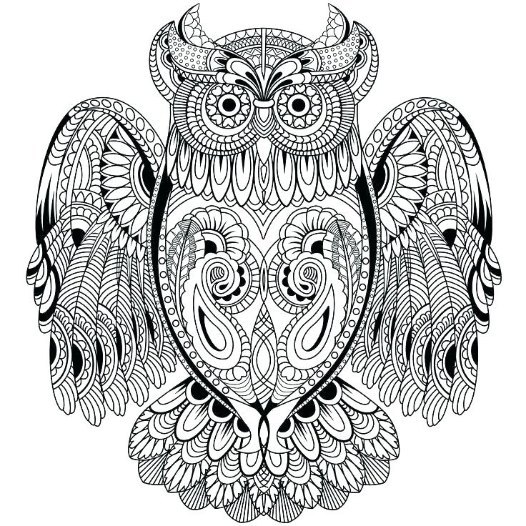 736x736 Owl Coloring Page Owl Mandala Coloring Page Coloring Page Of Owl