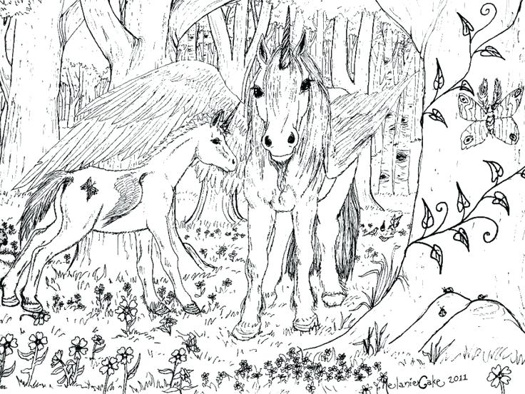 736x552 Super Hard Abstract Coloring Pages For Adults Hard Horse Coloring