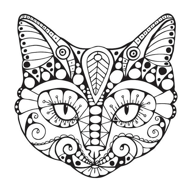 640x640 Cat Coloring Pages For Adults