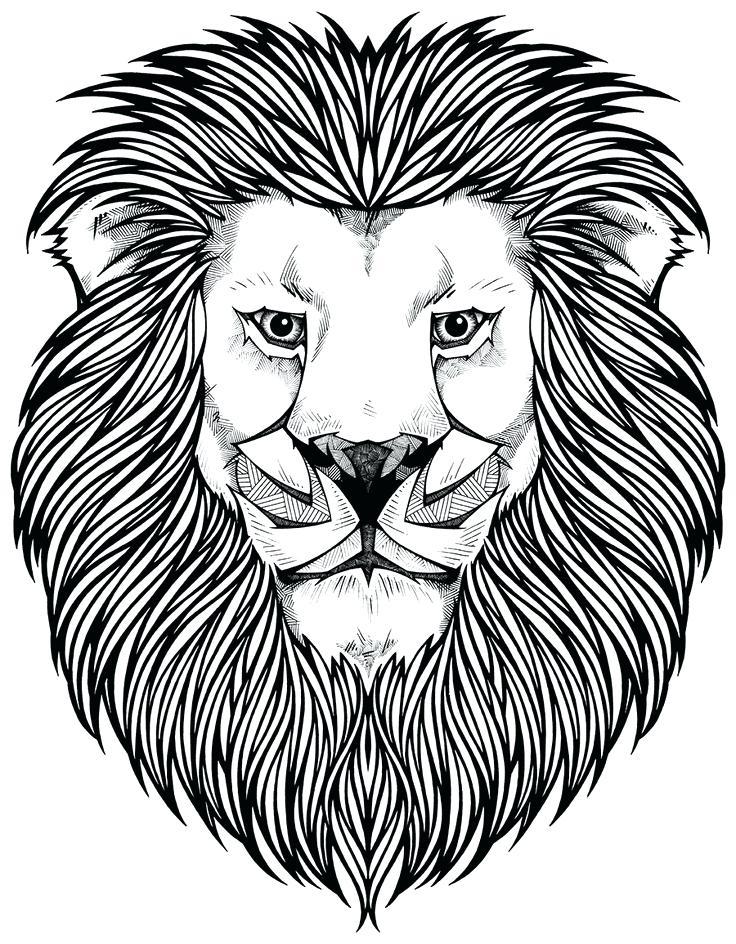 736x944 Lion Head Coloring Pages Coloring Page Lion Face Best Pages Ideas