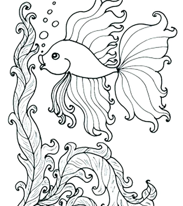 768x864 Fish Coloring Pages For Adults