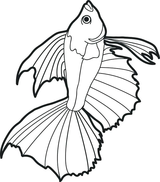 614x700 Fishing Coloring Pages Fishing Coloring Pages Printable Realistic