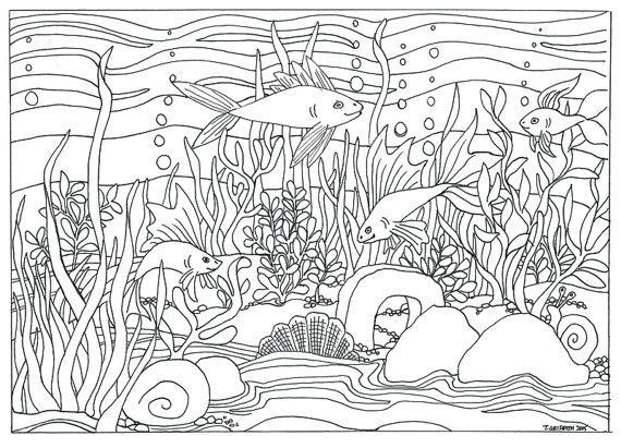 570x411 Printable Fish Aquarium Scene Coloring