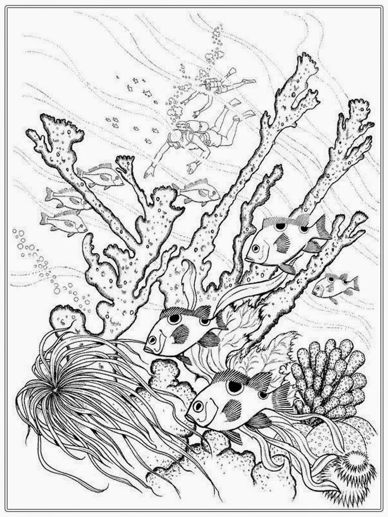 768x1024 Saltwater Fish Coloring Pages