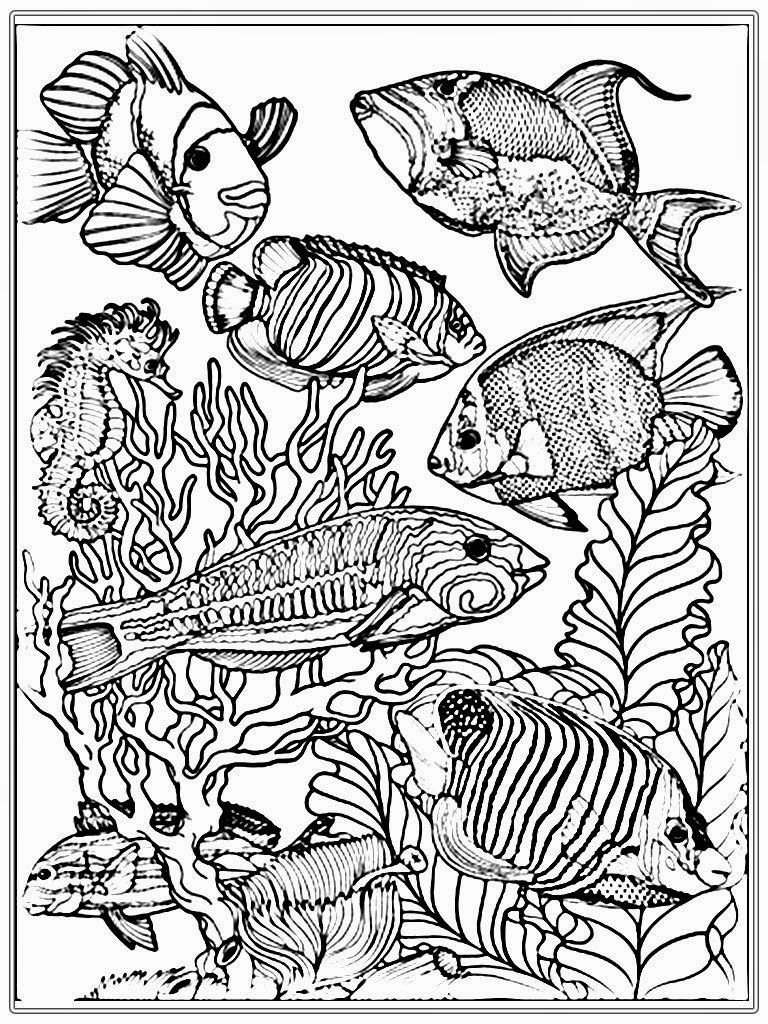 768x1024 Adult Free Fish Coloring Pages Realistic Coloring Pages