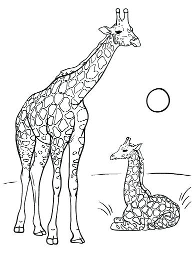 392x507 Giraffe Coloring Pages Giraffe Color Page Baby Giraffe Pictures