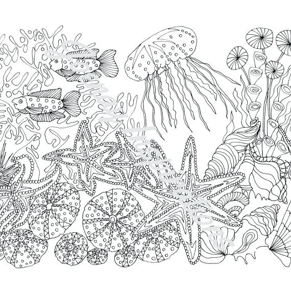 570x570 Ocean Coloring Pages For Adults Ocean Coloring Pages For Adults