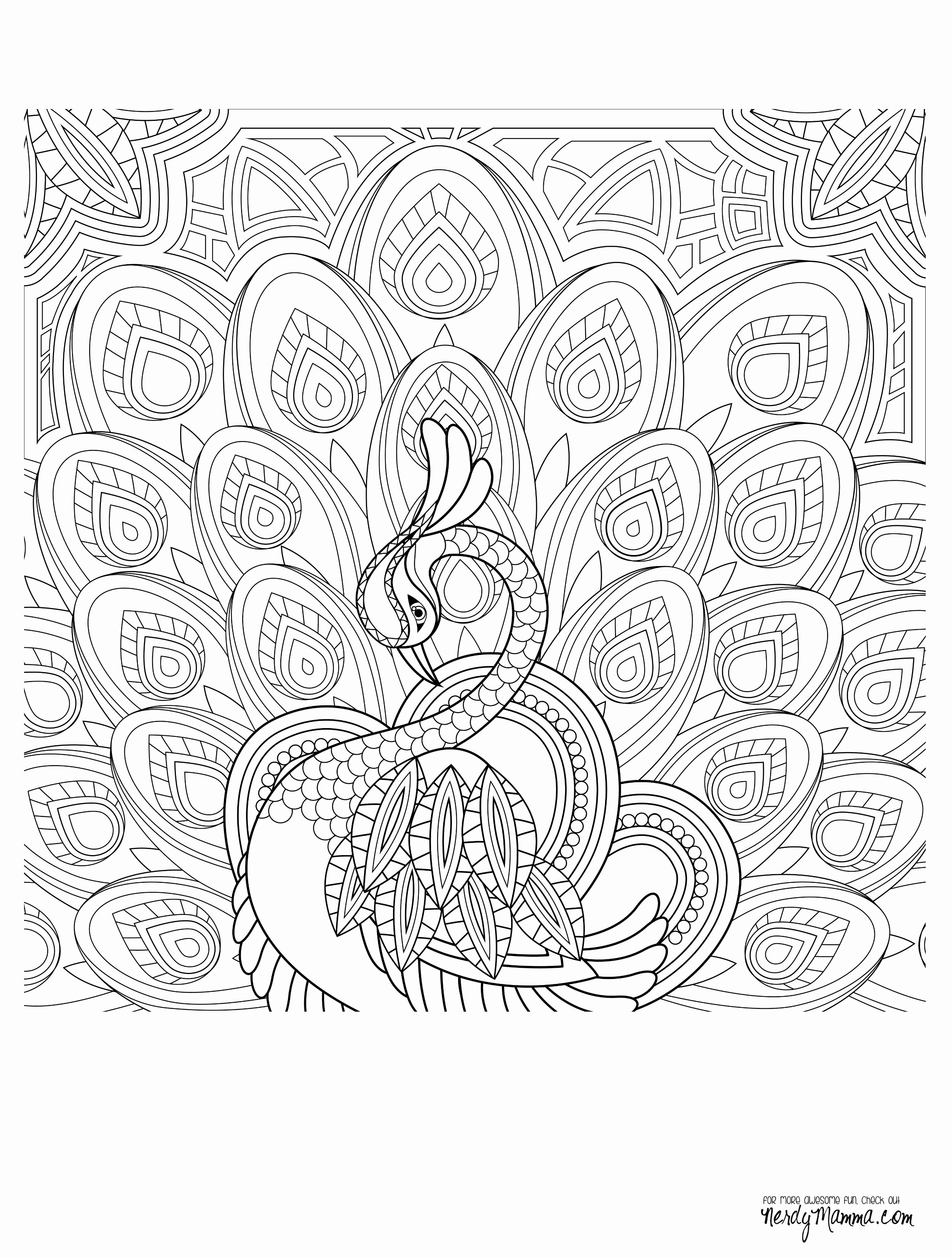 Coloring Pages For Adults Peacock At Getdrawings Com Free