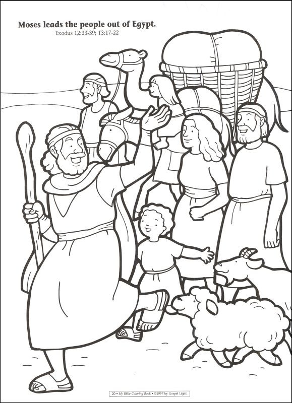 Coloring Pages For Beginners at GetDrawings | Free download