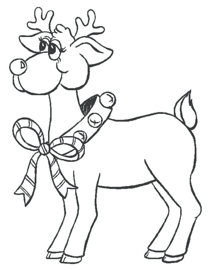 674x860 Forest Animals Coloring Pages All The Wild Animals Of The Fox