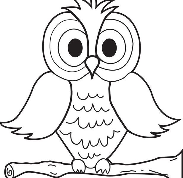 617x600 Elementary Coloring Pages Elementary Coloring Sheets Elementary