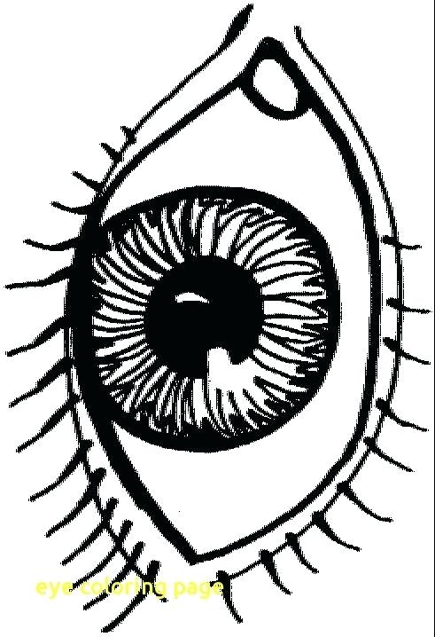 491x718 Eyeball Coloring Pages Eye Coloring Page With Eye Coloring Page