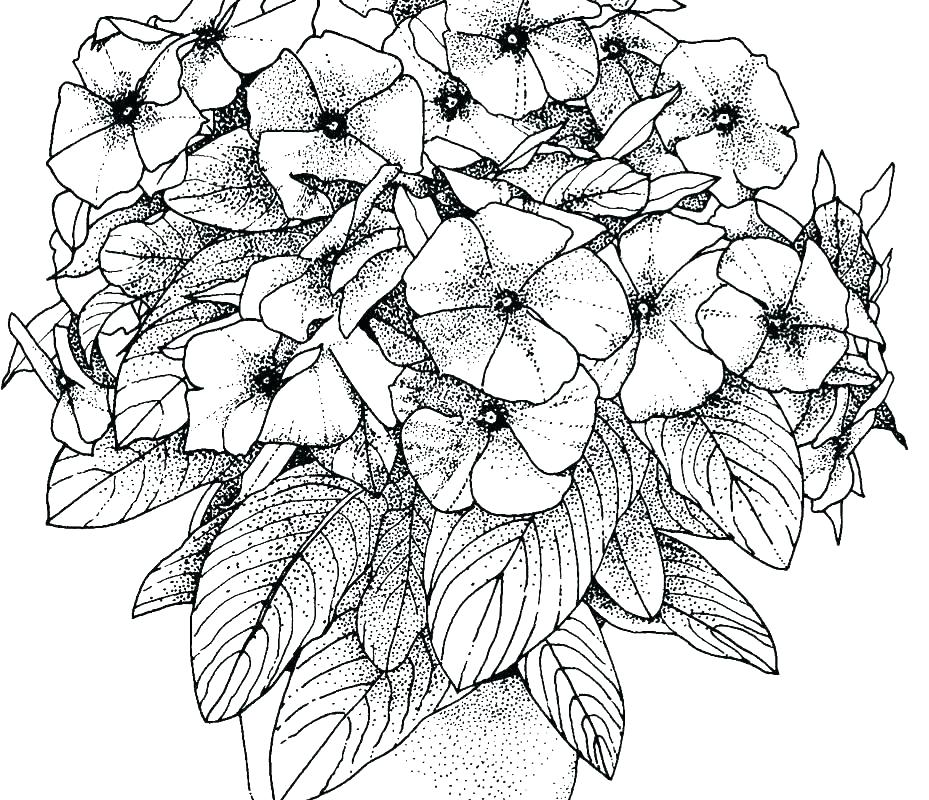 929x800 Coloring Pages That Are Hard Difficult Coloring Pages Photographs