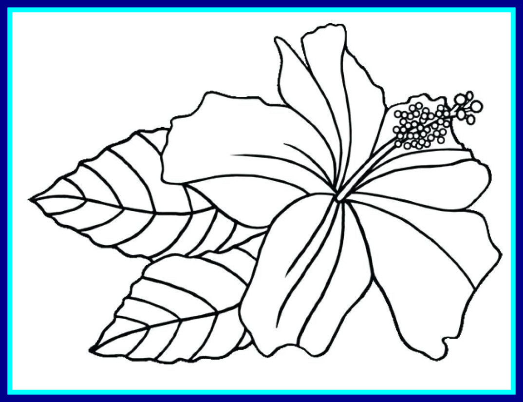 1074x825 Astonishing New Printable Flower Coloring Pages For Gallery Hard