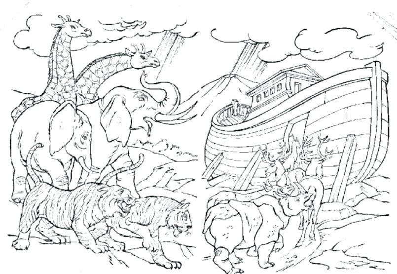 805x555 Noah Coloring Pages Ark Coloring Pages Ark Animal Coloring Pages