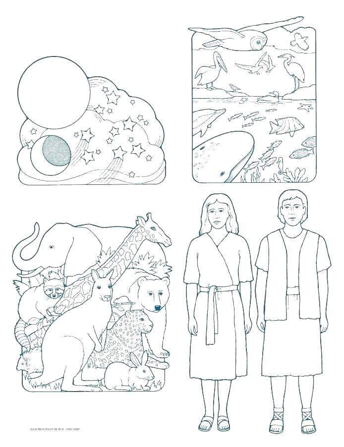 694x902 Creation Coloring Page Creation Color Pages Creation Coloring