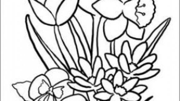 585x329 Coloring Pages For Seniors Coloring Page Sporturka Coloring