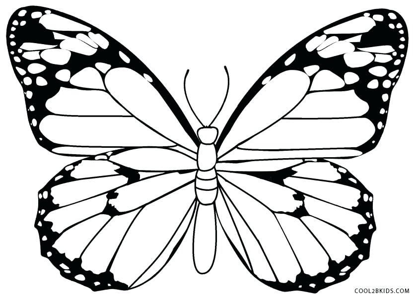 844x603 Coloring Pages Of Butterfly