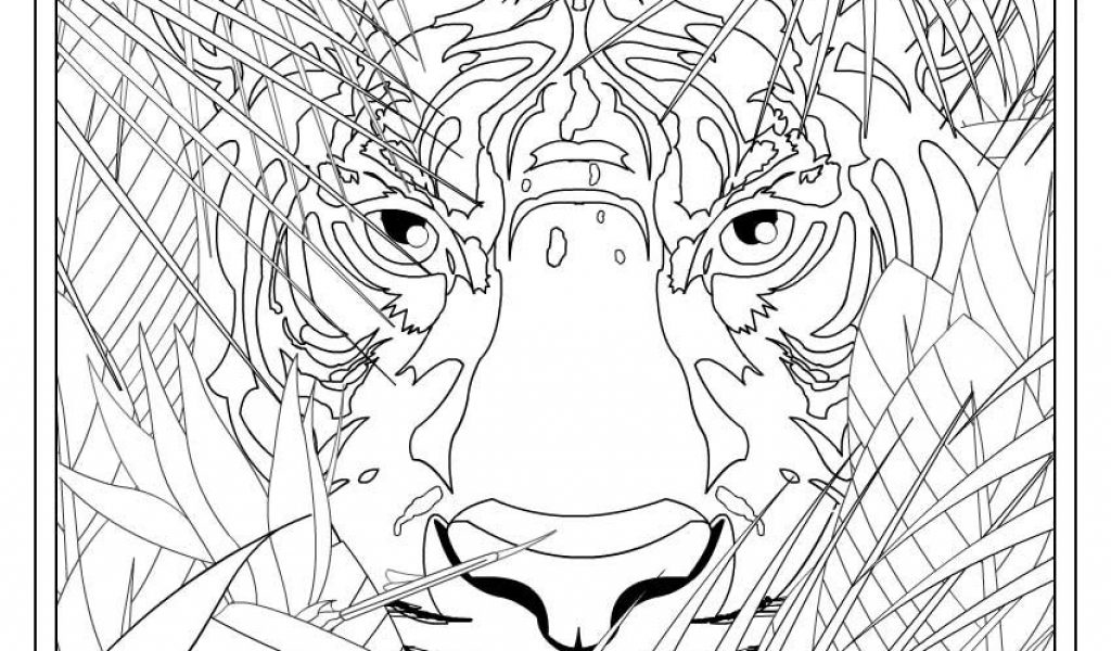 1024x600 Coloring Pages For Teen Boys Timykids
