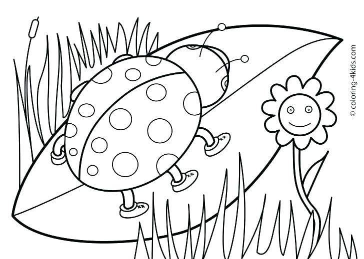 728x519 Spring Coloring Pages Printable Spring Coloring Pages For Toddlers