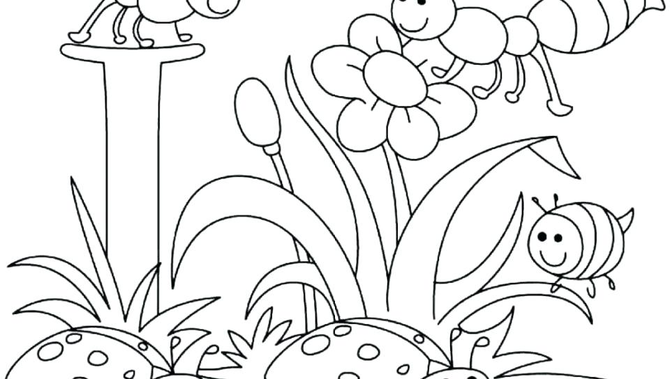 Coloring Pages Four Seasons At Getdrawings Com Free For