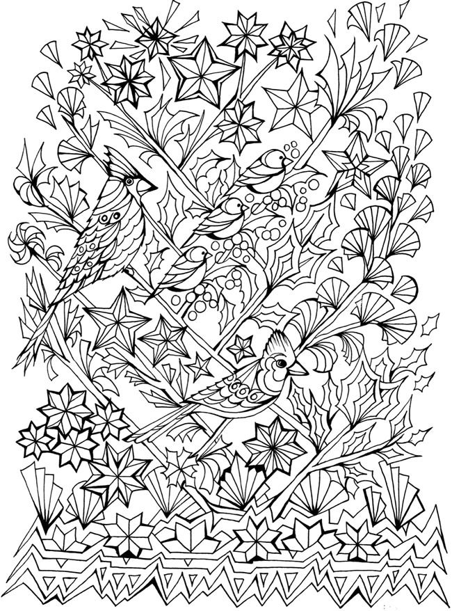 650x878 Creative Haven Deluxe Edition Four Seasons Coloring Book