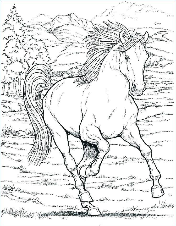 736x945 Coloring Pages For Kids Animals Horse Advanced Hard Animal