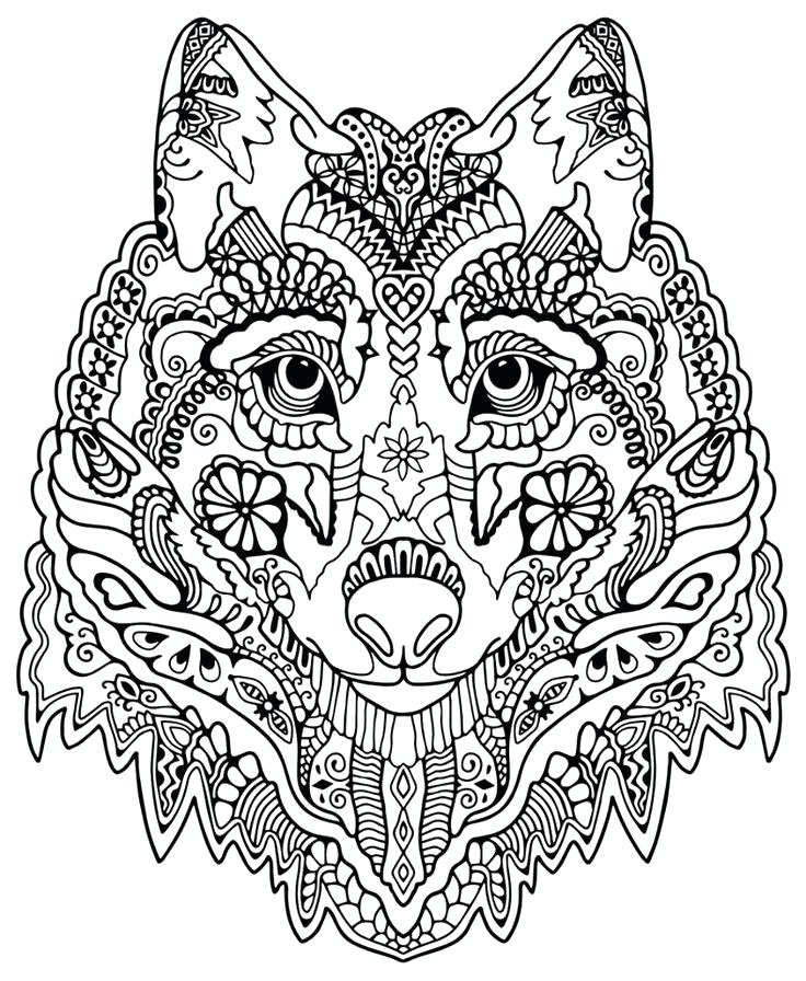 736x896 Animal Coloring Page Coloring Pages Adults Cat Head Cats