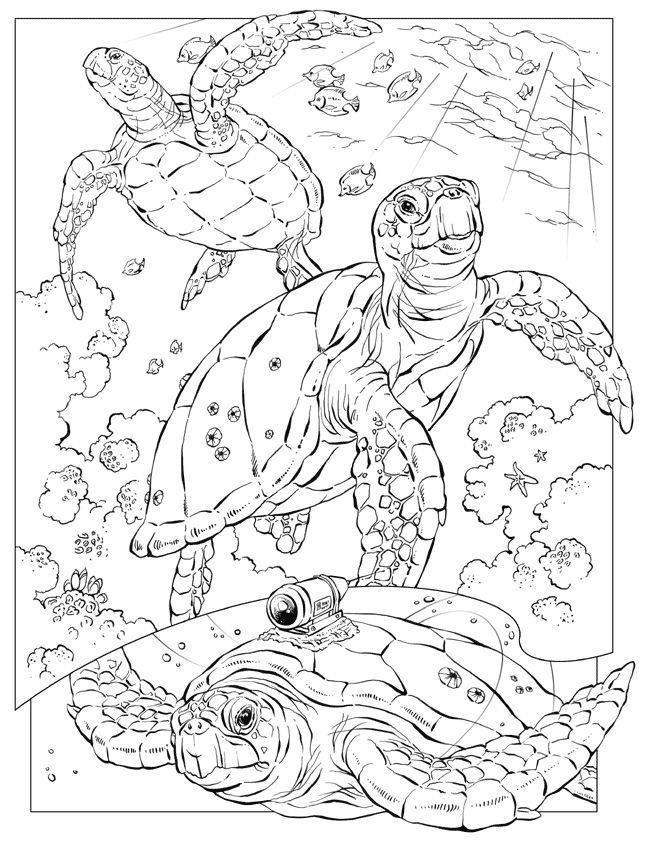 650x841 Printable Hard Coloring Page Animal