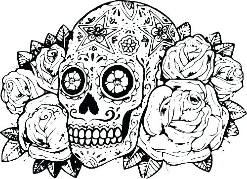500x362 Hard Animal Coloring Pages