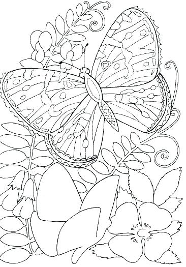 366x525 Coloring Pages That Are Hard Really Hard Mandala Coloring Pages