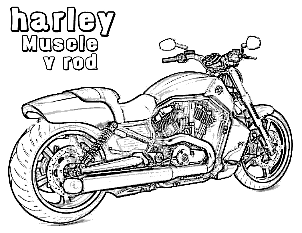 1056x816 Davidson Coloring Pages