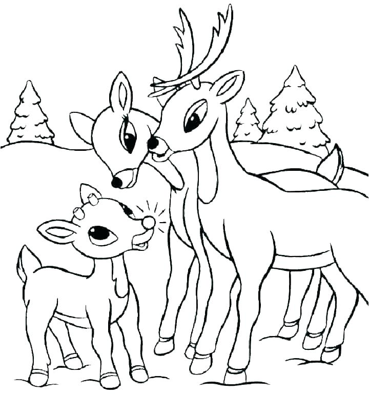 720x768 Reindeer Coloring Sheets Printable Coloring Pages Reindeer